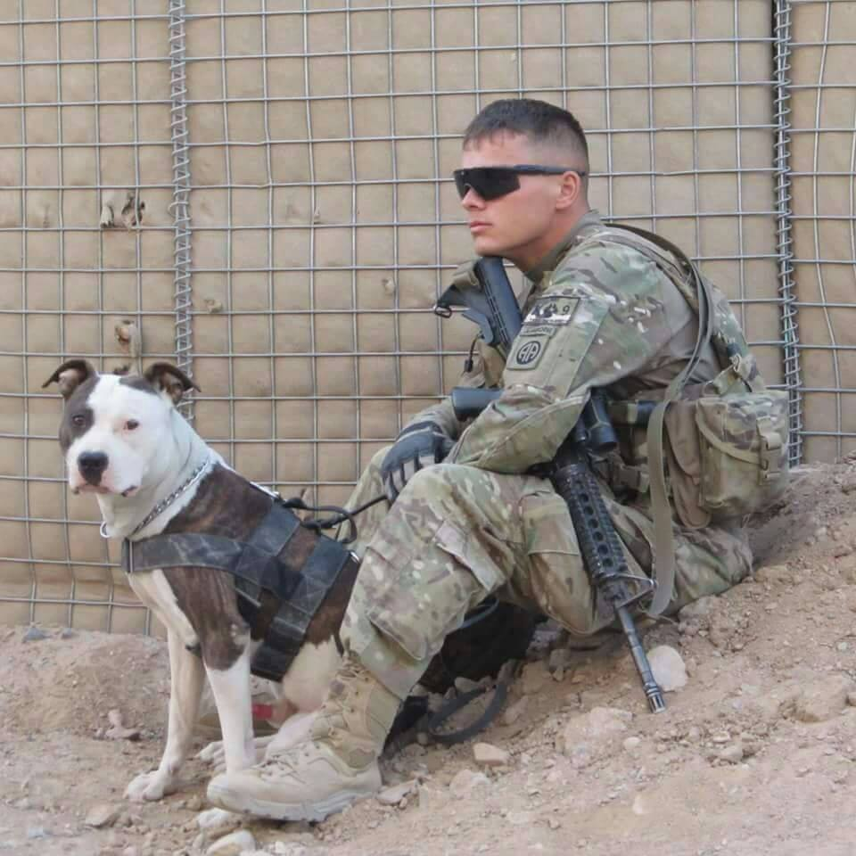 Cool Soldier Army Adorable Dog - 11  You Should Have_487496  .jpg