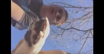 Dog Doesn't Like Human's GoPro Camera