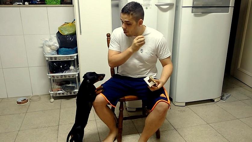 Genius Dad Uses Reverse Psychology to Get Dog to Take Medicine
