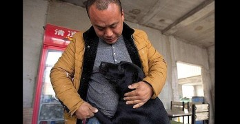 Millionaire Goes Broke Saving Dogs Destined for Slaughterhouse
