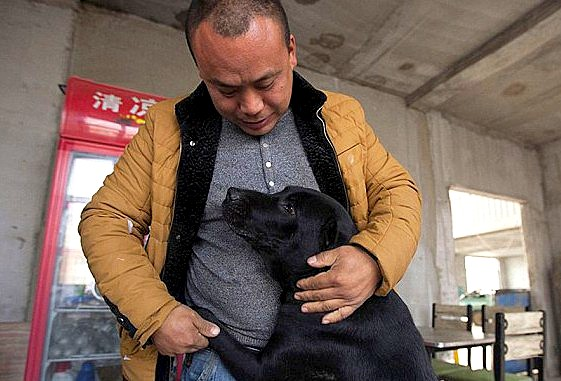11.21.15 - MIllionaire Goes Broke Saving Dogs Destined for Slaughterhouse1