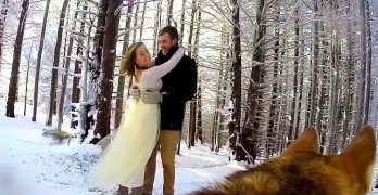 Couple Lets Their Dog Be Their Wedding Videographer