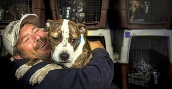 Man Spends Half of His Year Driving to Save Dogs