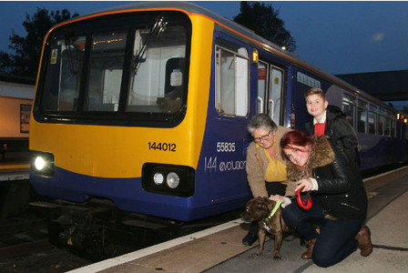 Dog Takes Train to Flee Scary Fireworks