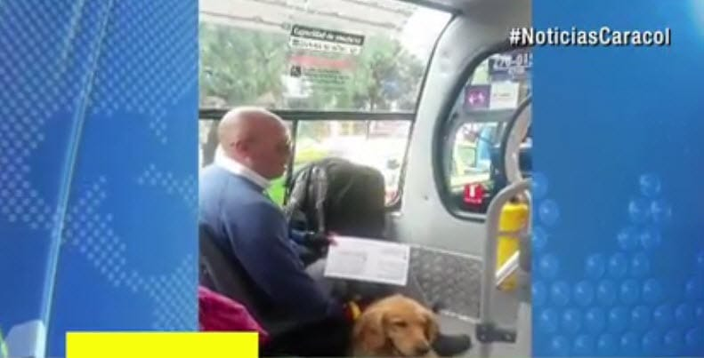 This Happened When Man and Service Dog Are Denied Bus Services