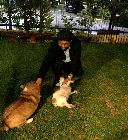 12.10.15 - Dog Missing for NINE Years Finally Reunited with Family4