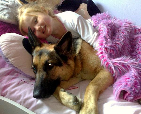 Parrner Letting Dog Sleep In Bed