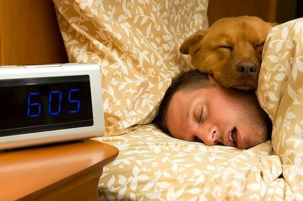 12.10.15 - Pros & Cons of Snoozing with Dogs5