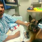 Injured Soldier & Dog Recover in a Hospital Room Together