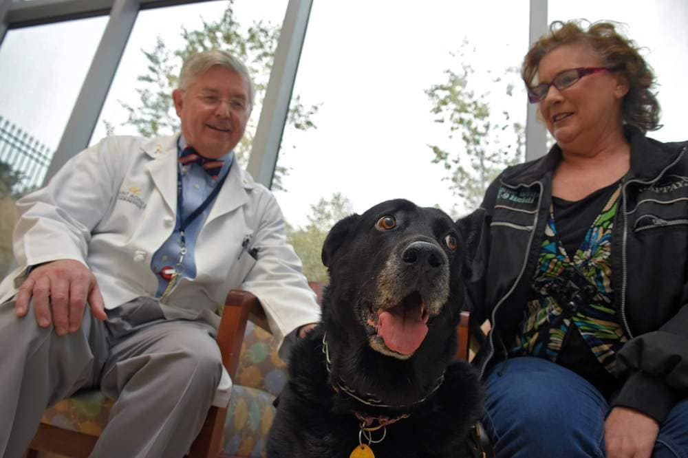 Search and Rescue Dog Finds Cancer Hidden in Human's Lungs