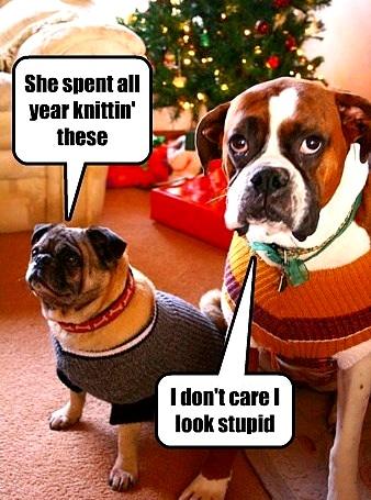 12.17.15 - Dog Ugly Christmas Sweater9