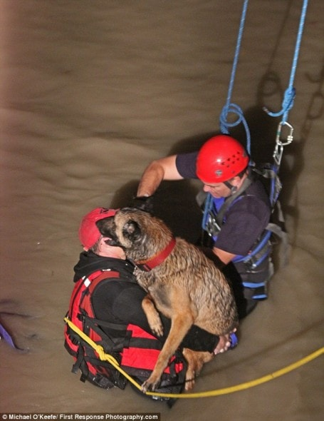 12.2.15 - rescue3