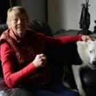 Great Grandma Left to Deal with Burglars After Dog Gives Them Kisses