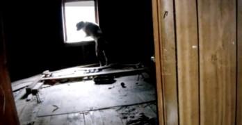 Dog Gets Christmas Eve Rescue