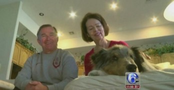 Couple's Missing Dog Returns Home After Six Years