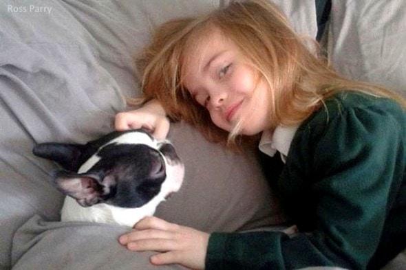 """12.9.15 - """"Santa"""" Brings Home Little Girl's Missing Dog3"""
