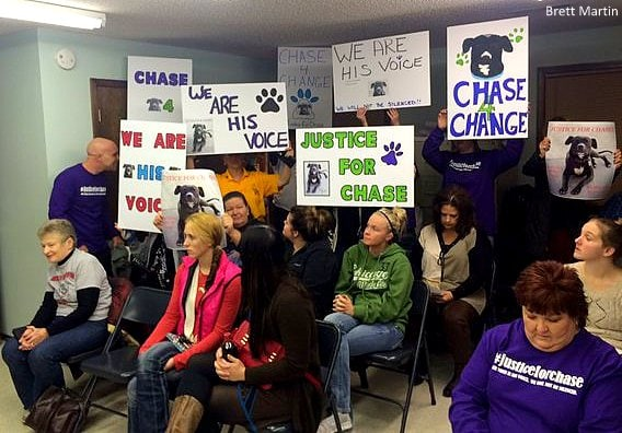 12.9.15 - Police Chief Resigns After Shooting Dog11