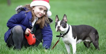 """Dear Santa"" Letter, Helps Bring Blind Lost Dog Back Home"