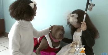 Disabled Dog and Twin Girls's Wishes Come True for Christmas