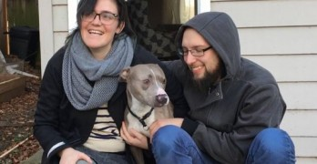 Stolen Dog Found Four Days After Thieves Ran with Pet