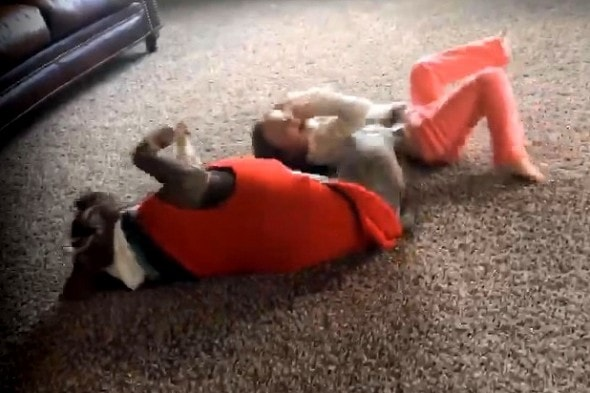 1.13.16 - Pit Bull Adorably Tries to Imitate Little Girl's Cartwheel3