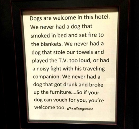 1.14.16 - Cartwright Hotel Welcomes Pets in the Best Way Possible0