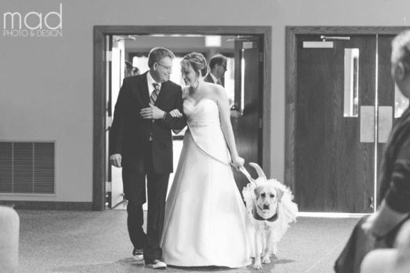 1.18.16 - bride dog 2
