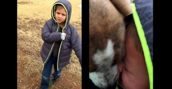 Little Boy Has the Most Tear-Jerking Reunion with His Missing Dog