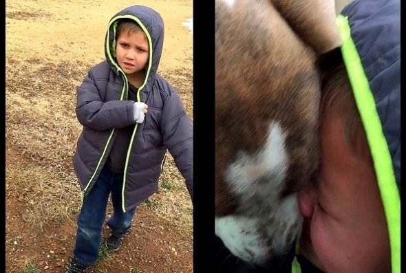 1.21.16 - Little Boy Has Tear-Jerking Reunion with Missing Dog3