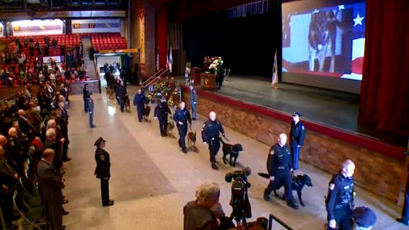 1.21.16 - Over One Hundred K-9s Walk in Funeral Procession for Jethro1