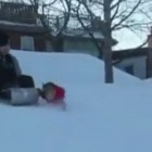 Dog Steals Sled From Underneath Little Kid