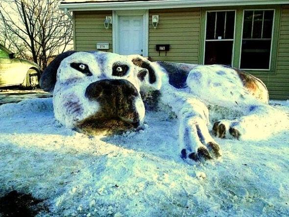 12.12.15 - Snow Sculptures13