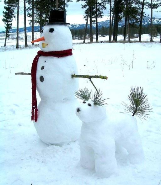 12.12.15 - Snow Sculptures15