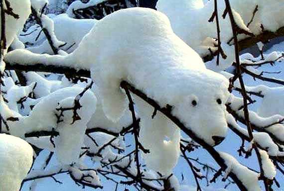 12.12.15 - Snow Sculptures18
