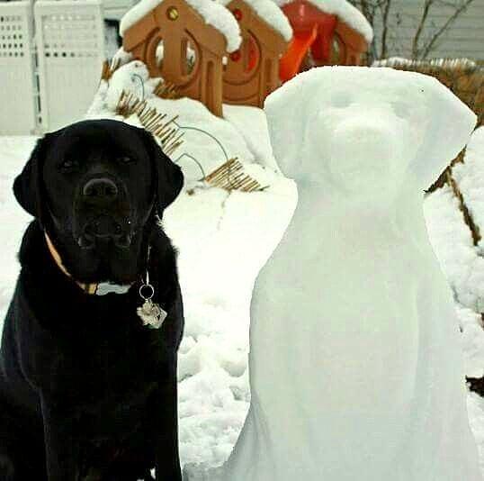 12.12.15 - Snow Sculptures22