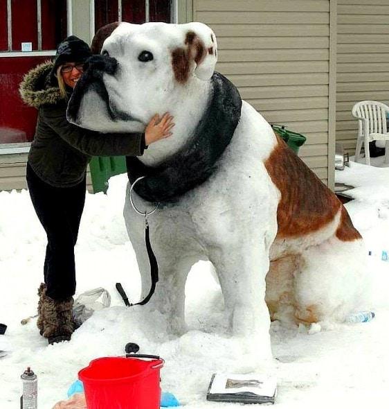 12.12.15 - Snow Sculptures23