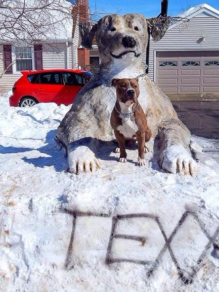 12.12.15 - Snow Sculptures6