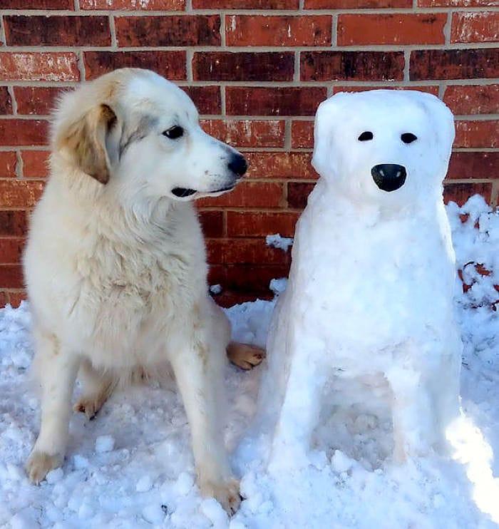 animal snow sculptures - photo #44
