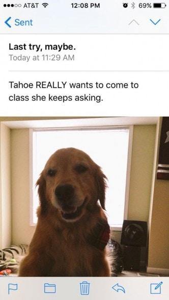 160106-Tahoe4