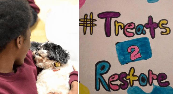 How a Bag of Dog Treats Can Help Homeless Pets