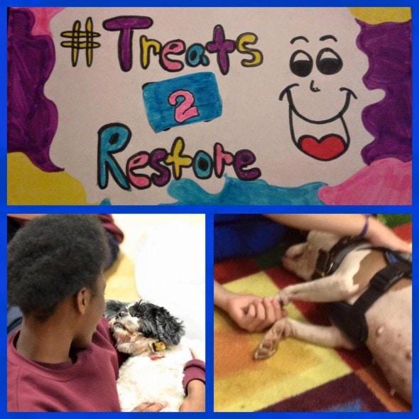 Photo credit: Rescue 2 Restore/Facebook