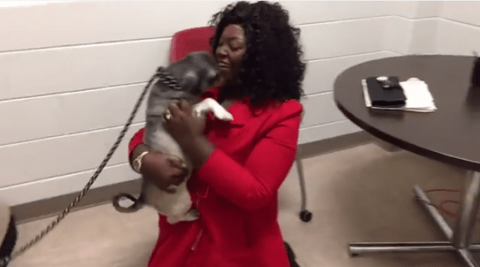 Woman Travels from Texas to Maryland to Reunited With Lost Pet