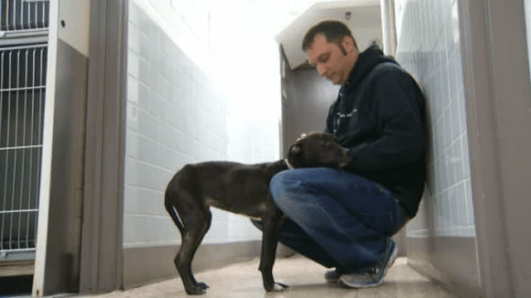 Sean Casey from Sean Casey Animal Rescue comforts the abandoned dog. Photo credit: NBC 4 New York