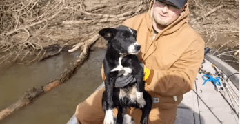 Men Gone Fishing Catch Something Better Than a Fish. A Puppy!