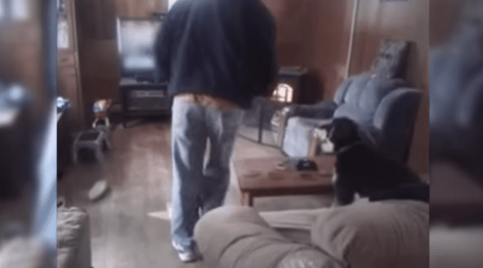Dog Has a Hard Time Letting Owner Take a Seat