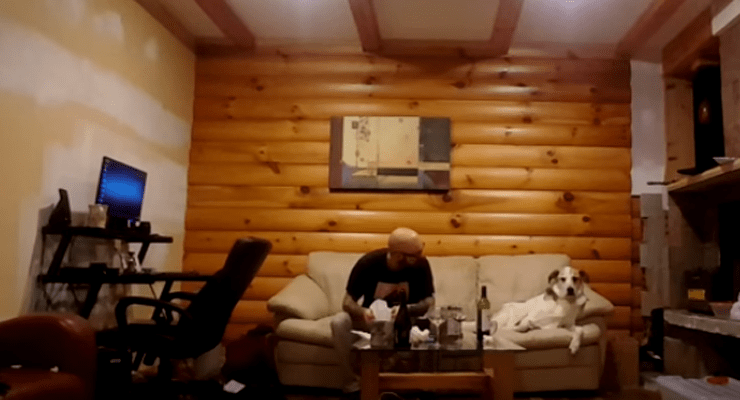 Funny Dogs Pretends Not to Be Interested in Owner's Meal