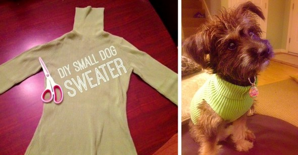 2.12.16 - Turn One Old Sweater into Three Sweaters for Shelter Dogs1