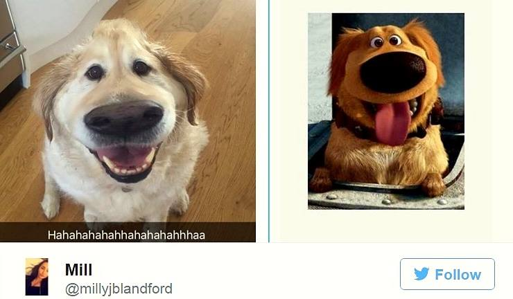 "Snapchat Filter Turns Your Dog into Dug from ""Up"""