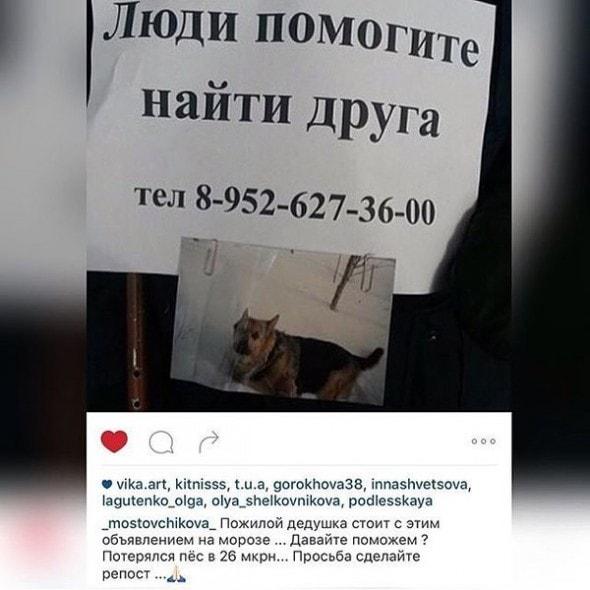 2.20.16 - Russian dog1
