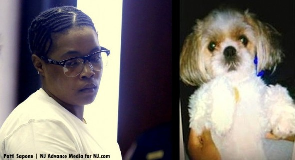 2.24.16 - Woman Sentenced to Four Years in Prison for Dog's Murder1